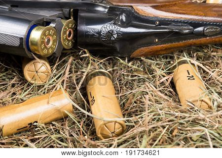 The hunting rifle lies in a straw with cartridges