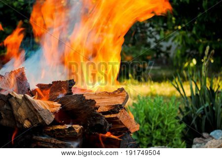 Bright orange red fire bonfire on wooden logs of wood in a barbecue on a background of green grass on a hot summer day barbecue kebab