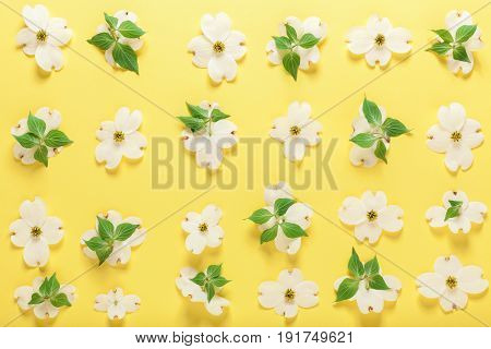 Spring Flowers On A Yellow Background