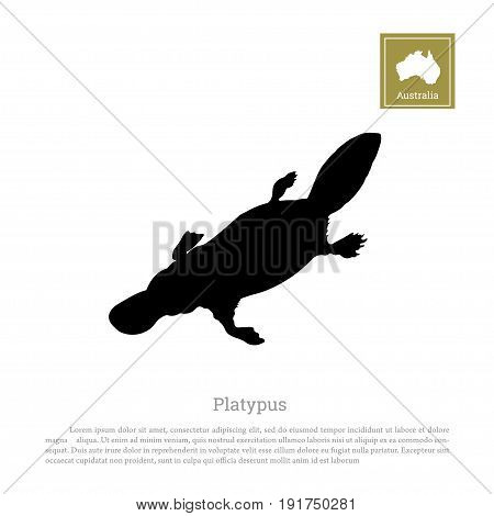 Black silhouette of platypus on a white background. Animals of Australia. Vector illustration
