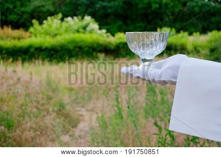 A waiter's hand in a white glove and a white napkin holding an empty glass vase on a blurred background of nature green bushes and trees