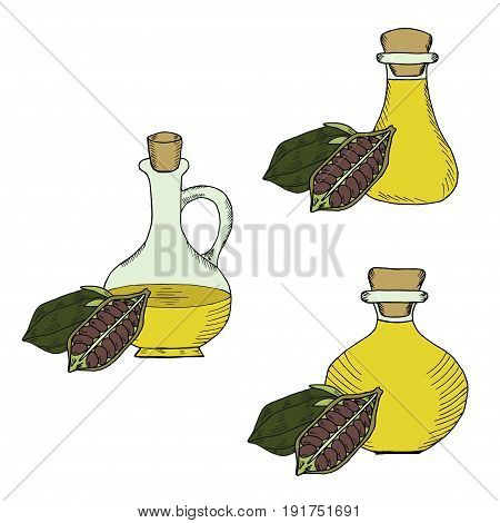 Sesame oil bottle or jug, nuts, natural organic butter ingredient. Hand drawn ink sketch illustration, set. Sesame seed, pods isolated on white. Treatment, care, food ingredient.
