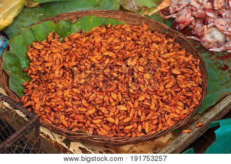 grub larvae fried, ready to eat in cambodia on local market