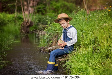 Preschool child boy playing on little river with ducklings letting the duckling swimming for the first time. Childhood concept
