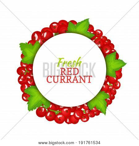 Round colored frame composed of red currant. Vector card illustration. Fruit label. Circle currant berries label fruit and leaves for packaging design of healthy food, detox, cosmetics cream, jam, juice