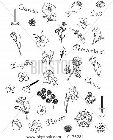 Icons set of garden vector illustration sketch