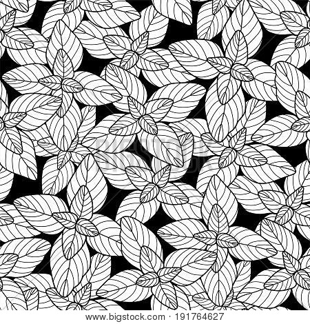Graphic oregano seamless pattern. Coloring book page design for adults and kids