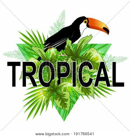 Green triangle with palm leaves and toucan bird on a white background. Abstract tropical summer background.