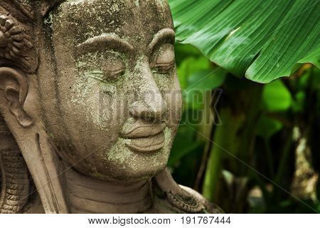 close up view of old concrete Buddha statue on green back