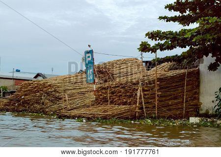 Can Tho Vietnam. Raw wood transportation in the Mekong Delta river. Log storage on the river bank