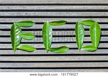eco word composed of green leaves wooden planks background