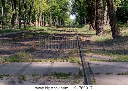 Railroad track winding through forest inside the city