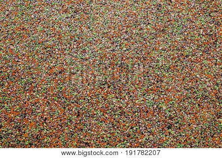 colorful abstract orange spotted background rubber floor