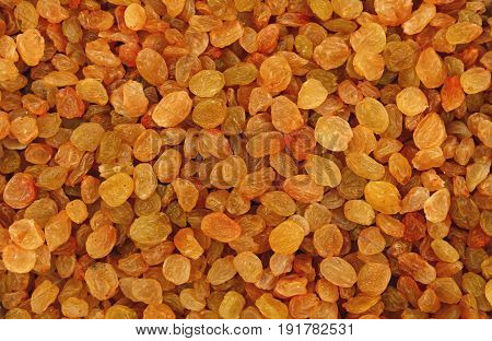 White Grape Small Raisin Close Up Background