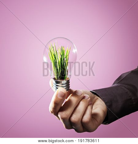 Renewable energy concept. Renewable energy concept. Hand holds a light bulb with green grass inside on pink background.