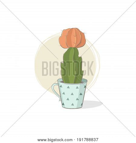 Cute vector illustration of a succulent. Cactus gymnocalycium in the tea cup. A funny picture for fans of succulents; for greeting cards; T-shirts; etc.