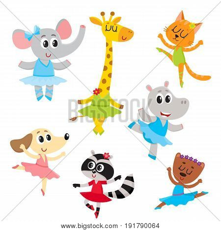 Cute little animal characters, ballet dancers in pointed shoes and tutu skirts, cartoon vector illustration isolated on a white background. Little baby animals, ballet dancers, ballerinas in tutu