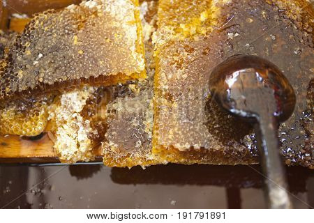 Honey comb close up. Large pieces of honeycomb and spoon at the village market