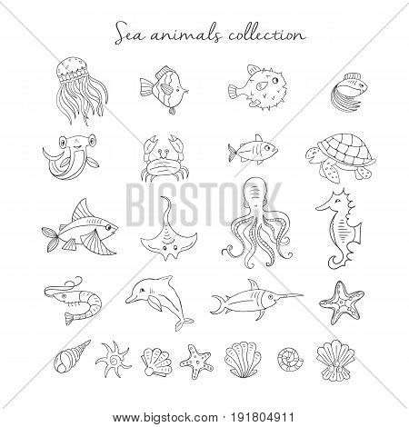 Vector Hand drawn sea elements: octopus, fishes, shells, fish hammer, turtle, dolphin, crab  jellyfish. Sea and ocean creation. Nautical and sea symbols isolated on white background. Hand drawn icons.
