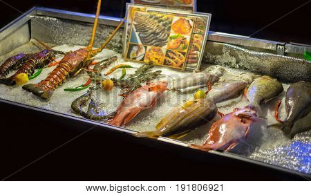 fresh live fish at the traditional korean seafood restaurant, Jeju island, South Korea