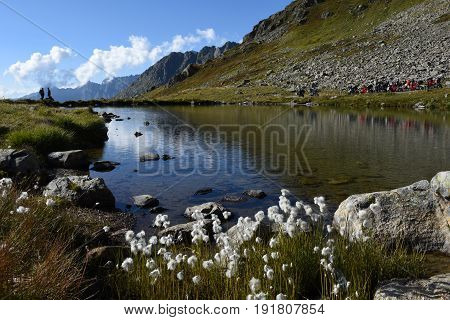 The Lake On The Top Of Susten Pass On The Swiss Alps