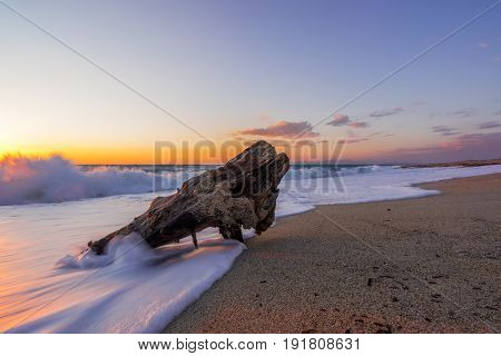 Wooden log at Sunset at Agios Ioannis beach in Lefkada Greece