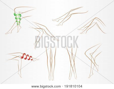 contours of slender female legs in various poses on a light background
