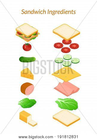 Vector illustration. Sandwich with ingredients sliced and whole. Vegetables - tomato, cucumber, salad. Cheese, ham. Isometry, 3D.