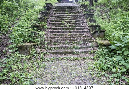 old cobbled road and stairs overgrown with moss and grass in a forest park.