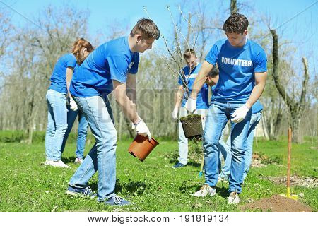 Group of volunteers working in park on sunny day