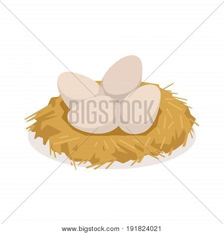 Chicken eggs in the nest, poultry breeding vector Illustration isolated on a white background