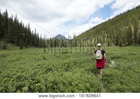 Male hiker walking in meadow towards Nihahi ridge, Alberta,Canada.