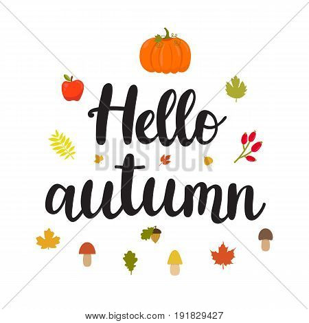 Hello Autumn. Beautiful Poster With Mushrooms, Apple, Leaves, Pumpkin And Hand Written Text. Funny V