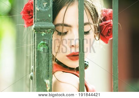 Spanish Woman With Rose In Hair At Iron Fence