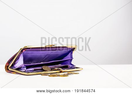 Open purse and coins are on the table. Gray background.