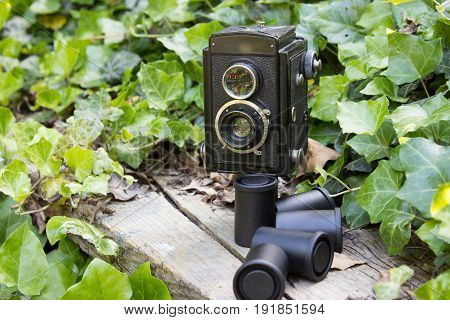 Retro camera and photographic films in a garden with ivy.