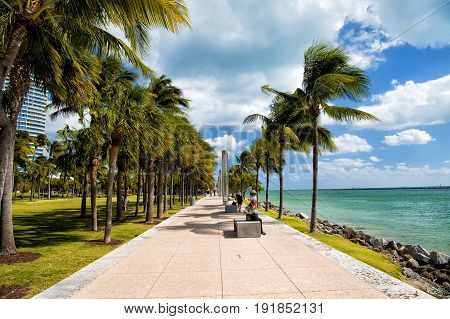 Miami USA-February 2 2016: idyllic street with green palms. South Pointe Park in the South Beach area of Miami Beach