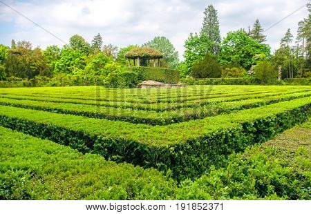 square maze hedge garden green gardening game