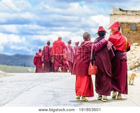 Group of Young tibetan Monks in Sichuan - China