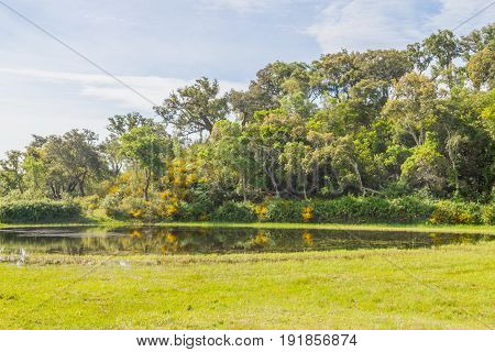 Forest And Lake In Vale Seco, Santiago Do Cacem