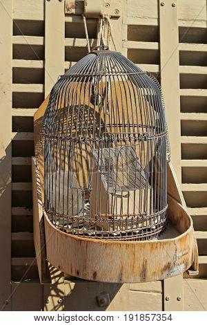 Old vintage cage on sale on flea market