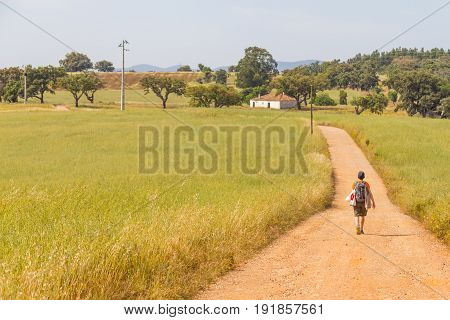 Girl hiking in Farm field with wheal plantation and trees in Vale Seco Santiago do Cacem Alentejo Portugal