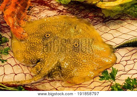 Fisherman's Catch Of Fresh Raw Rays Bataidea Fish From Aegean Sea, Sicily, Italy, Ready To Cook, On