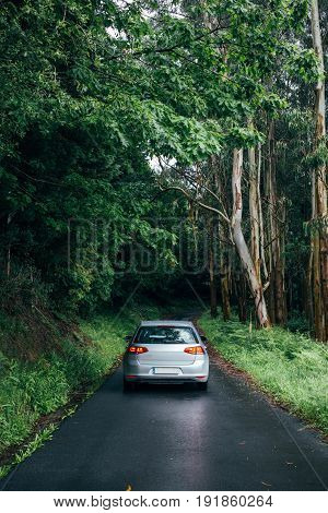 Lonely isolated car with parked signal lights on is parked in middle of narrow forest road