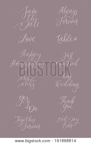 Vector Calligraphy Set For Design Wedding Invitations, Photo Overlays, Cards.