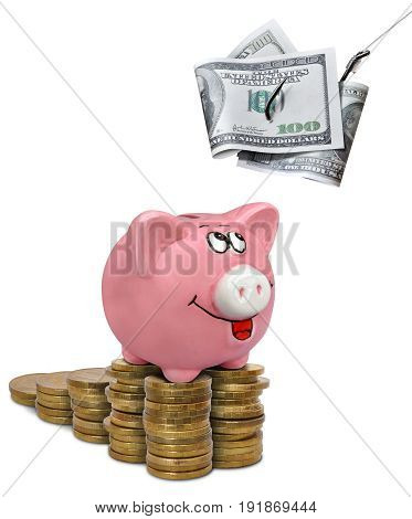 Dollars on a fishing hook and a piggy bank on stacks of coins on white background
