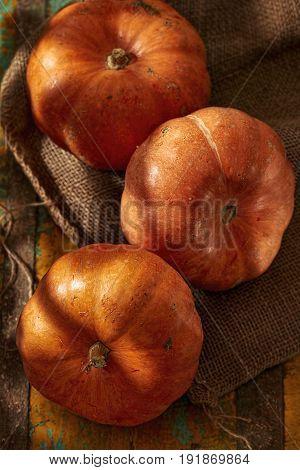 Three ripe pumpkins in the shadowy cellar