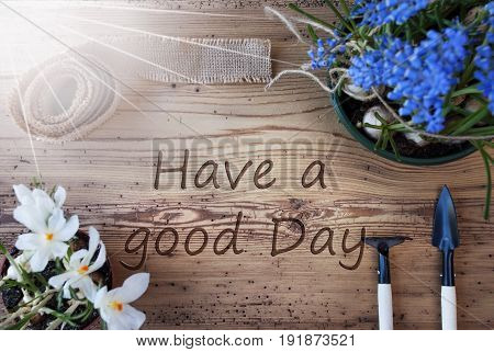 English Text Have A Good Day. Sunny Spring Flowers Like Grape Hyacinth And Crocus. Gardening Tools Like Rake And Shovel. Hemp Fabric Ribbon. Aged Wooden Background