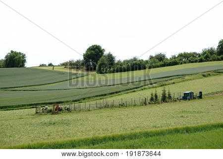 A garden with a tool cottage stands amidst a hill landscape with meadows and fields.