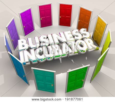Business Incubator Startup Lab New Company Doors Center 3d Illustration